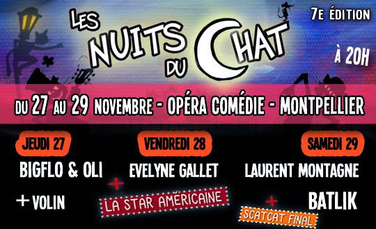 Visuel Les nuits du Chat 2014